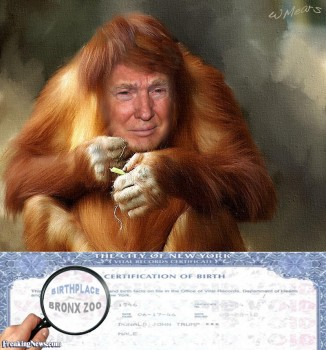 donald-trump-s-birth-certificate-105614